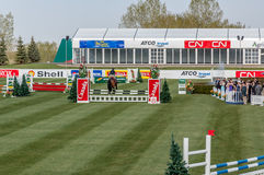 Horse jumping Stock Images
