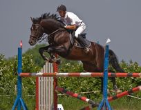 Horse jumping show. Dark brown stallion and rider on the horse jumping show Stock Photography