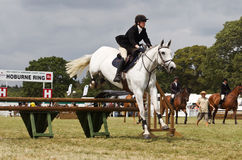 Horse jumping show Stock Image