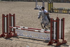 Horse jumping show Royalty Free Stock Photography