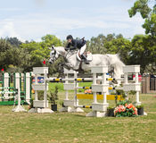 Horse Jumping Show, Del Mar, California Stock Image