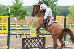 Horse jumping show Royalty Free Stock Photos