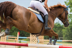 Horse jumping show Royalty Free Stock Image