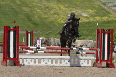 Horse jumping sport. Bromont june 14, 2015 picture of black horse with young girl jumping a hurdle during competition Stock Images
