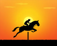 Horse Jumping in sunset time. vector Royalty Free Stock Photo