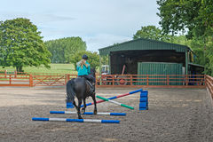 Horse jumping Stock Image