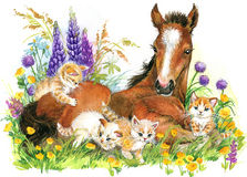 Horse and and kittens. background with flower. illustration