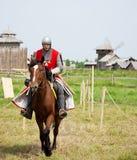 Horse knight stock image