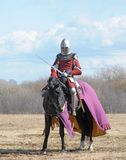 The horse knight. With a sword in a hand Royalty Free Stock Image
