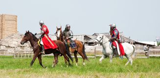 Horse knights Stock Images
