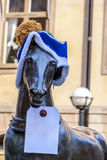 Horse in a knitted hat... Royalty Free Stock Photos