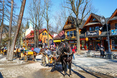 Horse at Krupowki street in Zakopane, Poland Stock Photos