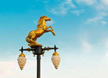 Horse lamp Stock Image