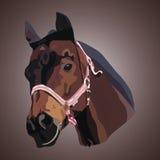 horse landbouwbedrijf, schone het paardstallen van Nice Stock Fotografie