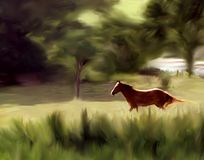 Horse in the Landscape. A horse running on a farm in rural Arkansas, a photograph I took and then used Corel Painter to add brushstrokes so it would resemble a Stock Photos