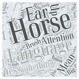 Horse Language word cloud concept word cloud concept vector background Royalty Free Stock Images