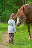 Horse and little girl. Total trust. Big chestnut horse pulls it's neck to little beautiful girl stock image