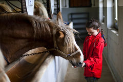 Horse and little girl. Stock Photography