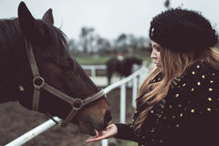 Horse looking into eyes of beautiful girl Royalty Free Stock Photos