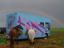 Horse Lorry Royalty Free Stock Photography