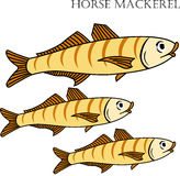 Horse mackerel fish color cartoon  illustration. Stock Photography