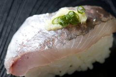 Horse mackerel sushi Royalty Free Stock Image