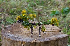 Horse made of twigs and flowers. Yellow flowers royalty free stock photo