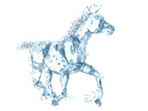 Horse made of water. 3d illustration.  Royalty Free Stock Photo