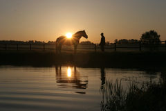 Horse and man. Silhouette of horse and man Royalty Free Stock Photography