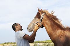 Horse and man Royalty Free Stock Photography