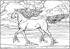 Horse with mane and tail of flames of fire. Image of a horse with mane and tail of flames of fire. Coloring page Royalty Free Stock Photos