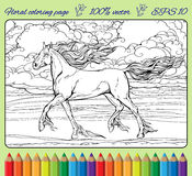 Horse with mane and tail of flames of fire. Image of a horse with mane and tail of flames of fire. Coloring page in a frame Royalty Free Stock Images