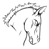 Horse mascot character Royalty Free Stock Images