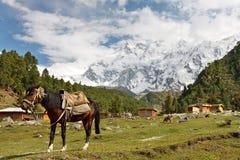 Nanga Parbat Scenery, Himalaya, Pakistan Stock Images