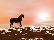 Horse meeting the sun - 3D render Stock Photo