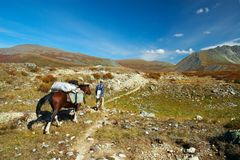 Horse, men and blue sky. Altay. Royalty Free Stock Photos