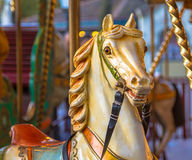 Horse in a merry go round Royalty Free Stock Photos