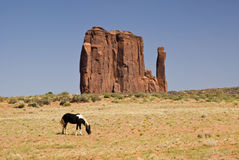 Horse and mitten. View of sandstone mitten formation in Monument Valley, horse in the foreground Royalty Free Stock Image