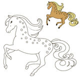 Horse in motion coloring book for children Stock Image