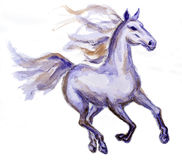 Horse in motion. Watercolor painting Royalty Free Stock Photos