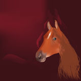 Horse and mountain Royalty Free Stock Photography