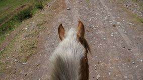 Horse on mountain dirt road with Rider Point of View stock video