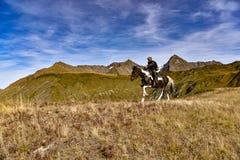 Horse in the mountain near Sochi stock photos