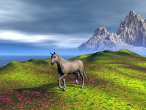 Horse in the mountains. A horse in an illustrated background of fields  and mountains Stock Image
