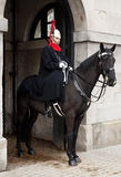 Horse mounted english royal guard Stock Image