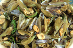 Horse mussels cooked Royalty Free Stock Image