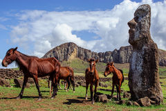Horse near statues  on the Isla de Pascua. Rapa Royalty Free Stock Photo