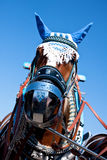 Horse at the Oktoberfest, Munich Stock Image