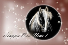 Free Horse On Christmas Card. Royalty Free Stock Images - 34814899
