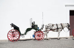 Horse and open Carriage Royalty Free Stock Photo